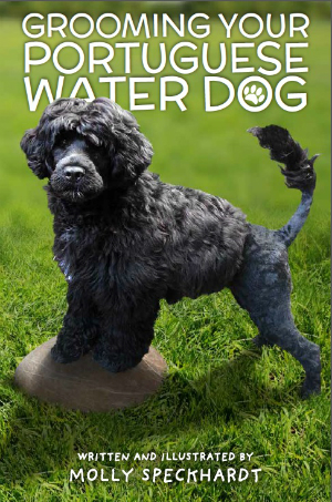 Portuguese Water Dog Water Training Equipment